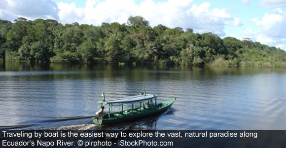 Go-Wild-On-An-Amazon-River-Boat