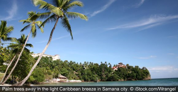 One Expat's Success Story In Samaná, Dominican Republic