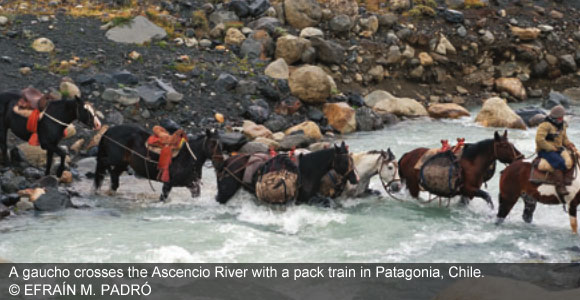 Window On The World: The Gauchos Of Torres Del Paine
