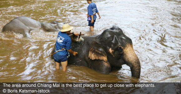 Chiang Mai: Thailand's Haven in the Hills