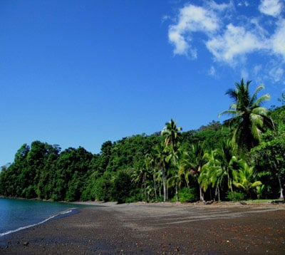 Revealed: 3 Best Buys in Costa Rica