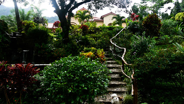 Panama-Slideshow-8