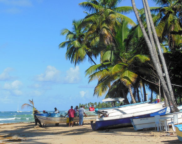 Savor World-Class Beaches and Fine Dining in Las Terrenas