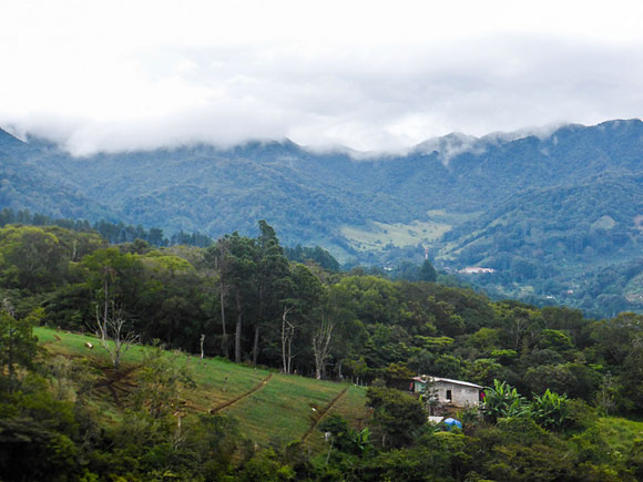 Chiriquí Needs a Handyman and Lawn-Care Service
