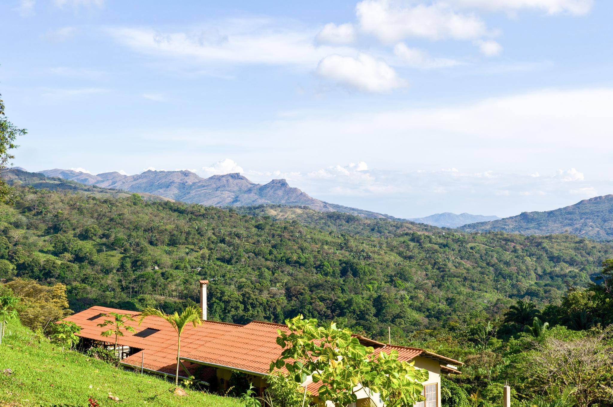 Reinventing Ourselves as Coffee Farmers in Veraguas