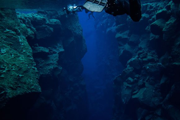 Sky-High Dining, Deep Sea Diving, and More