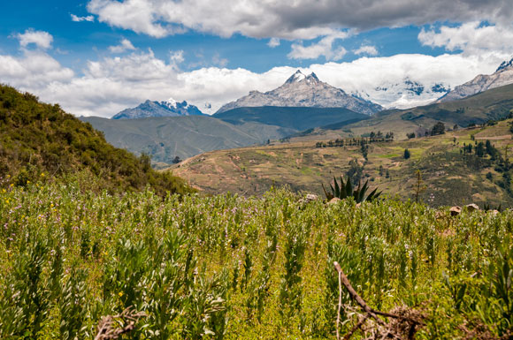 A New Craft Beer Adventure in the Peruvian Andes