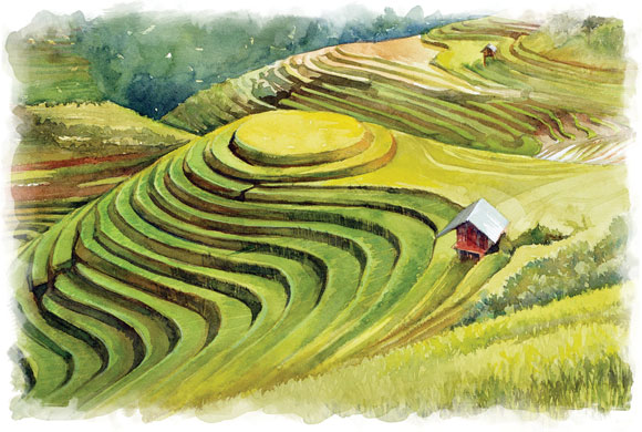 The Road Less Traveled in Mu Cang Chai