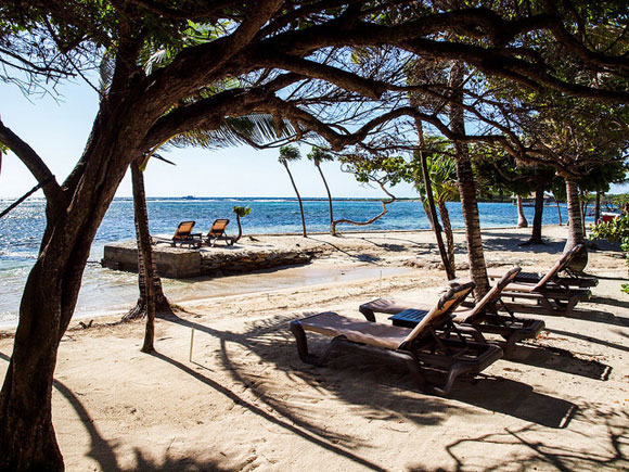 My First Thoughts on Caribbean Roatán