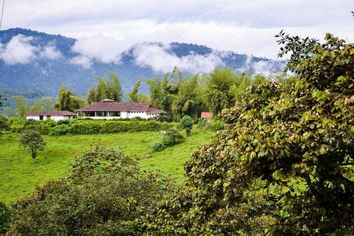 Mindo, Ecuador: A Nature Lover's Paradise