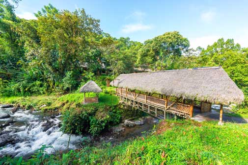 Small-Town Ecuador—Surround Yourself With Nature in Mindo