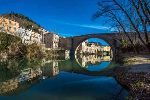 A Move to Le Marche Didn't Mean Leaving Pets Behind