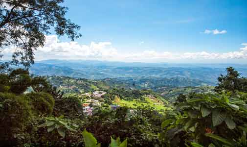Colombia's Coffee Triangle: Latin America's Best-Value Highlands Region: Part One