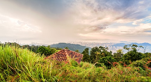 Uncovering Treasure on a Hike Through Penang's Hills