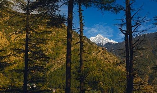 A Utopian Wonderland in the Indian Himalayas