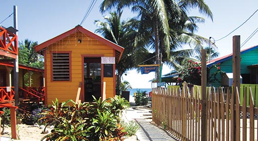 Keeping the Dream Alive in Caribbean Belize