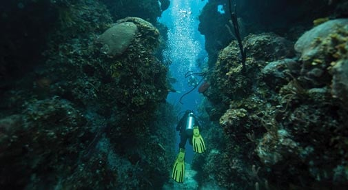 Belize: One of the World's Best Places to Learn to Dive