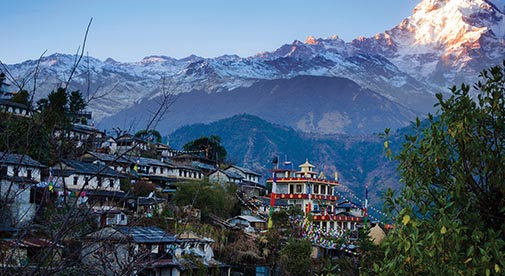 Creature Comforts at the Gateway to the Himalayas